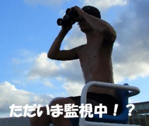 自転車サイトブログ用画像20140331